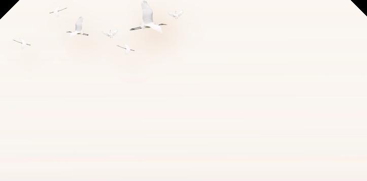 九九重阳节微信公众号推文素材模板 9月9日敬老重九节图文模板