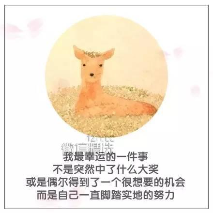 【荐读】平安夜,送你一世平安