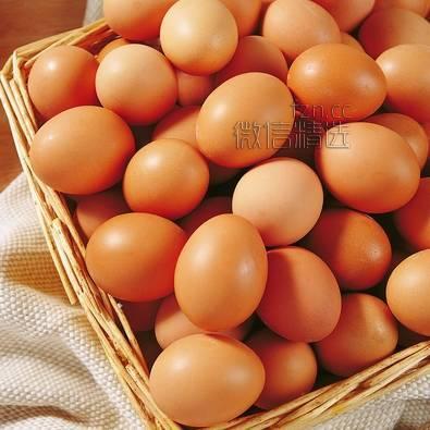 鸡蛋10种新意烹调方法,以后每天做给家人吃…