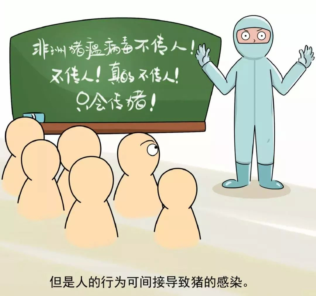 三全、金锣、科迪水饺被曝检出非洲猪瘟病毒?!最新回应来了-小苏-每日微信精选
