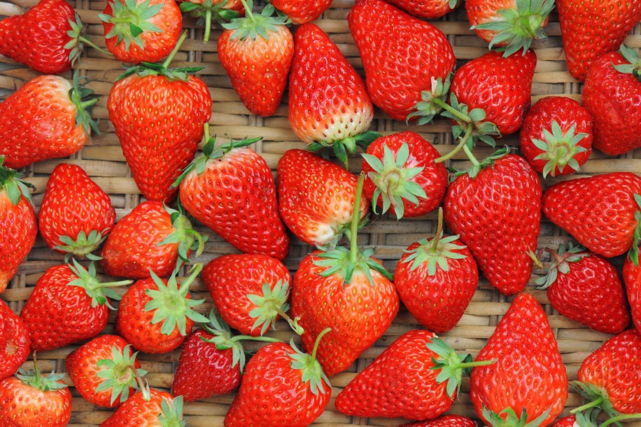 车厘子就是樱桃!19个水果的真相让你惊掉下巴