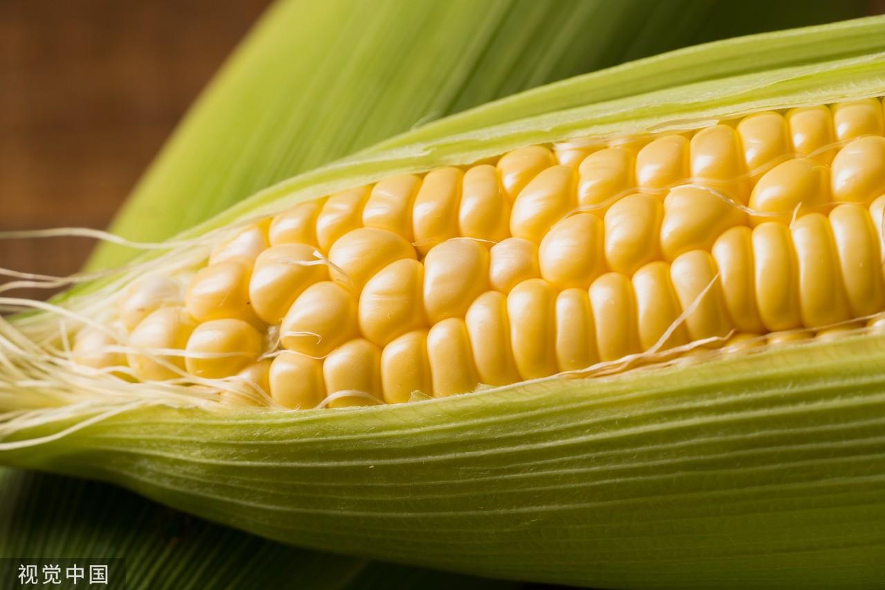 为啥外面买的煮玉米比自己煮的好吃?有可能因为…玉米香精