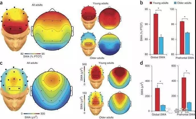 """""""熬夜会变傻""""终于有科学依据了,你睡着的时候,真的被洗了脑。"""
