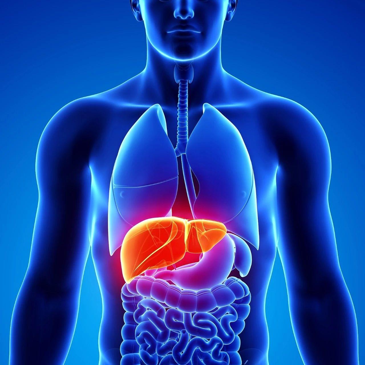 肝癌这种癌症隐蔽性极强,发现就是晚期?这些症状要警惕