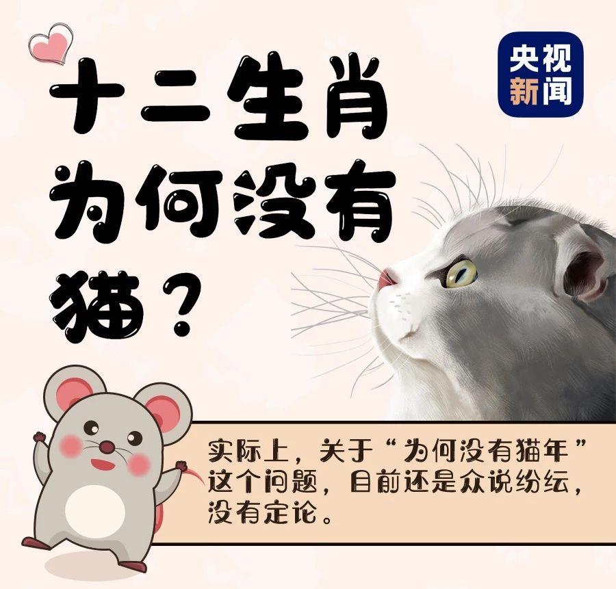 十二生肖中为啥没有猫? 鼠年将至,通过一张图 一起来聊聊
