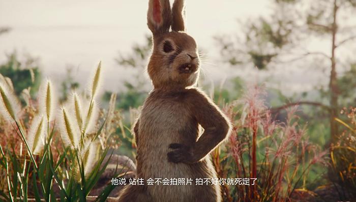 华为最新动画广告,华为发布了又萌又搞笑的动画片《有惊无险》-小苏-每日微信精选