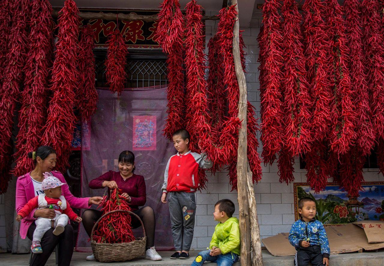 春生、夏长、秋收、冬藏 。14亿中国人的丰收地图