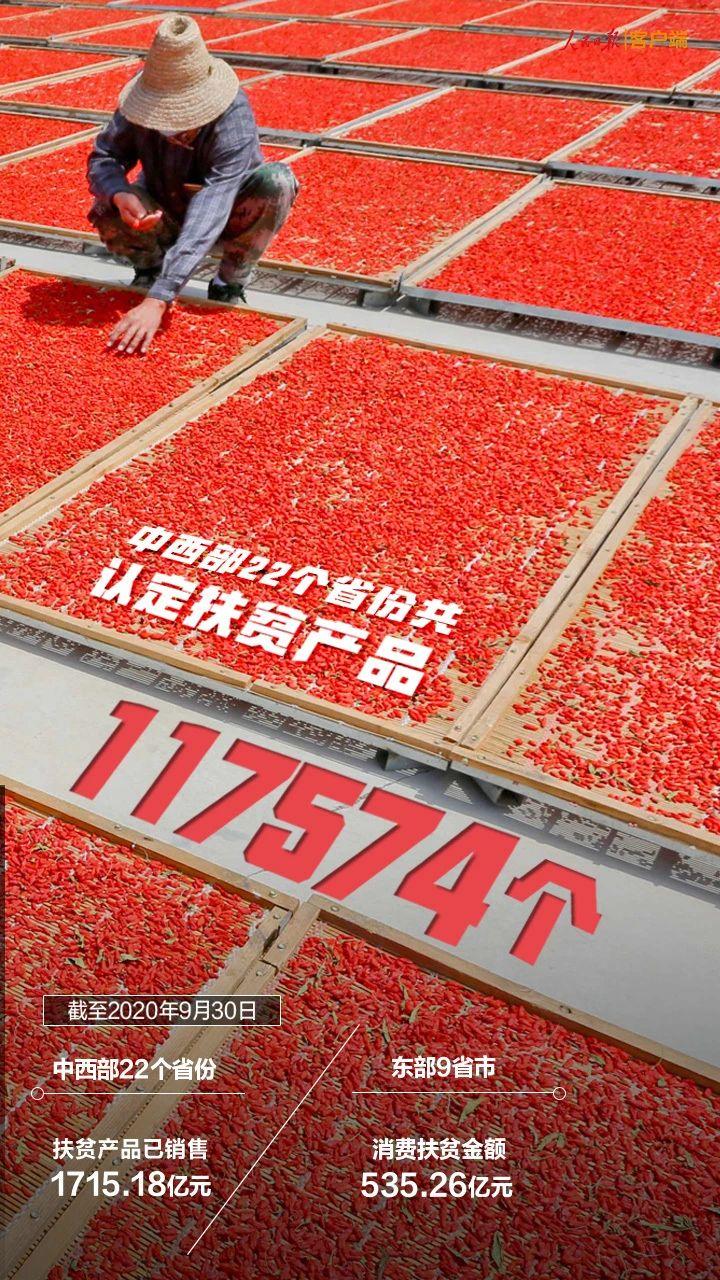 这张扶贫成绩单,很中国!