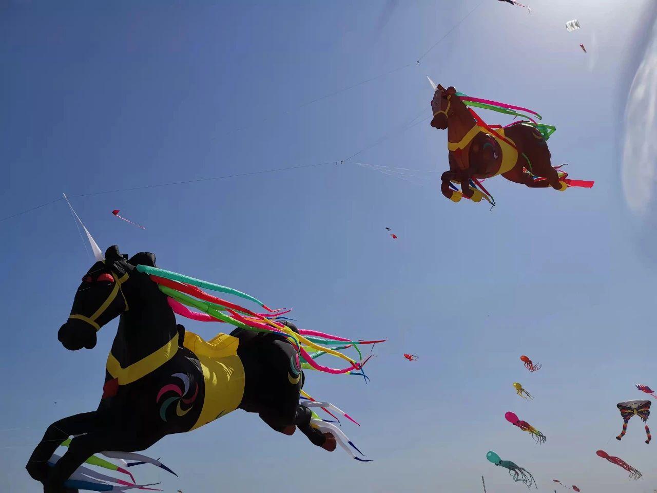 潍坊国际风筝会,听说在这里,啥都能飞上天~