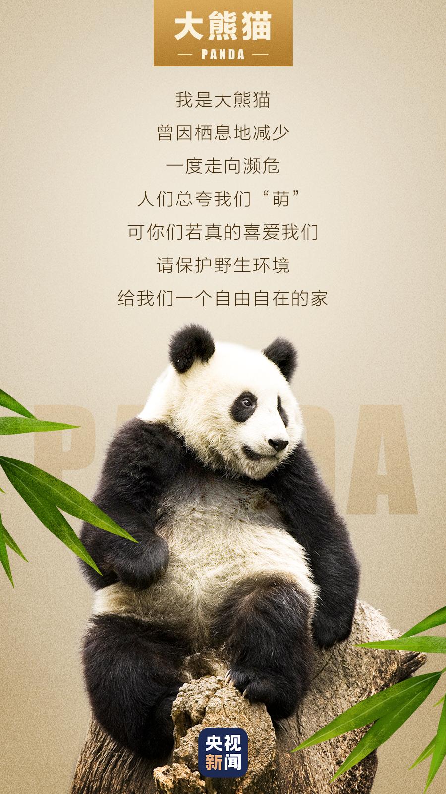 今天(4月8日)是国际珍稀动物保护日