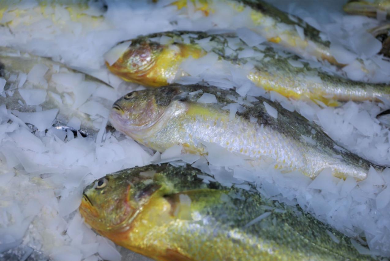 再次提醒:鱼的这个部位别再吃了!男子多器官受损,还没有特效药!